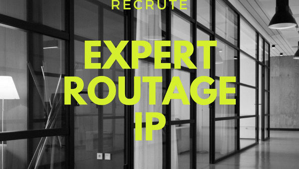 Expert Routage IP