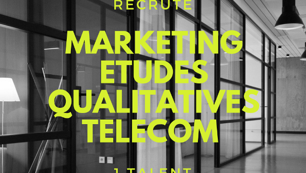 Chargé d'Études qualitatives Marketing Internationales Télécom