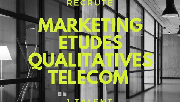 Chargé d'Études qualitatives Marketing Internationales Télécom